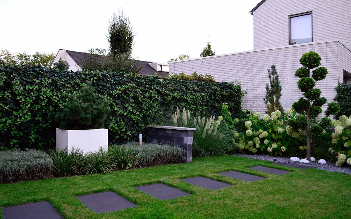 Klassieke tuinen tuinafscheiding klimop