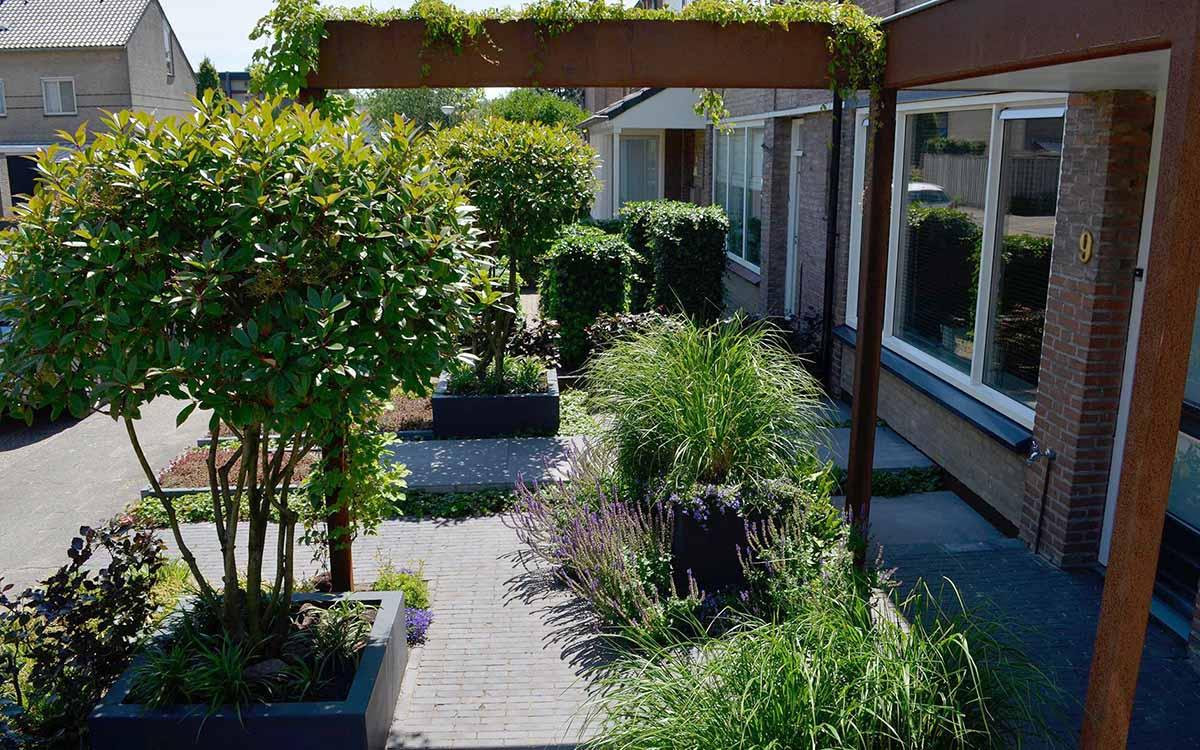 Fabulous strakke tuinen met siergrassen rm93 for Strakke tuinen met siergrassen
