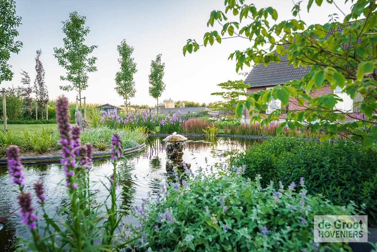 Natuurlijke tuin vijver