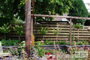 planten natuurlijke tuin