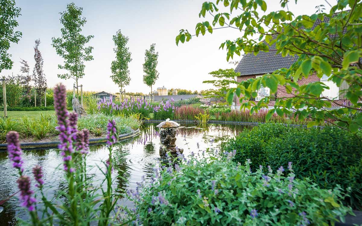 vijver aanleggen in je tuin